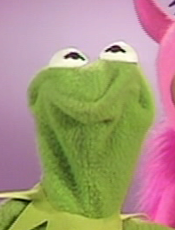 Kermit is feeling unsure about living in my muddy, flooded basement. (Photo Credit: Jim Henson Productions)